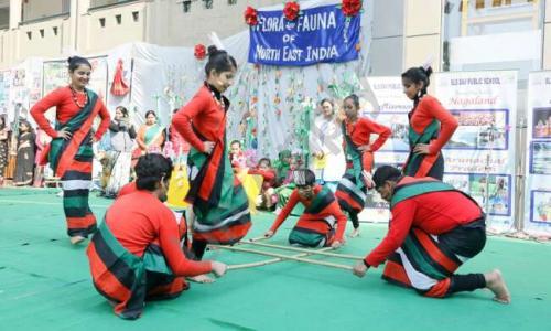 Smt. Swarn Lata Sethi DAV Public School