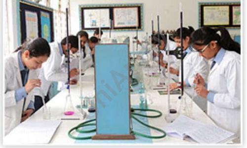 Shishu Niketan Public Secondary School