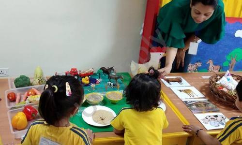 Modern Montessori International PreSchool