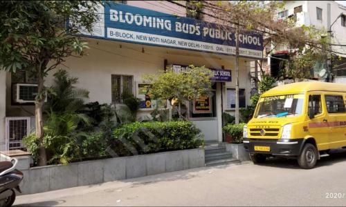 Blooming Buds Public School