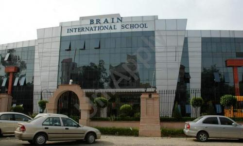 Brain International School